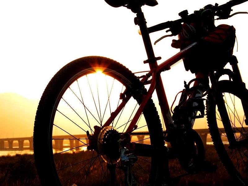 r trein en fiets naar Duitsland reizen
